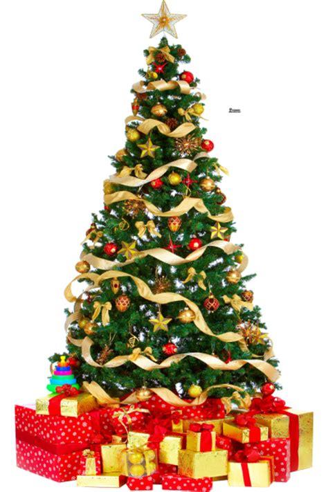 arbol de navidad imagen 14 193 rboles de navidad en formato png transparente