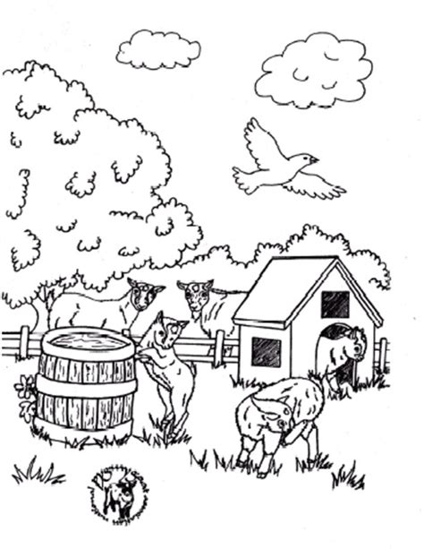 pygmy goat coloring page pygmy coloring page mom baby baby goat coloring pages