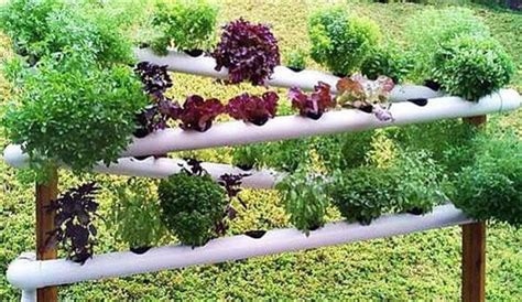 Pvc Garden Ideas 48 Diy Projects Out Of Pvc Pipe You Should Make Diy Crafts