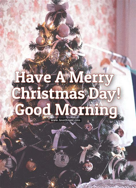 merry christmas day good morning pictures   images  facebook tumblr