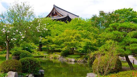 Rinn Toji Kyoto Japan Asia toji temple in ky蜊to expedia