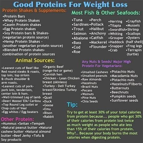 protein weight loss protein for weight loss fitness motivation