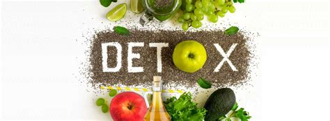 Detox After Festival by The Essential Post Festival Detox Diet Plan