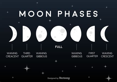 current moon phase moon information resource and guide vector flat moon phases icons download free vector art