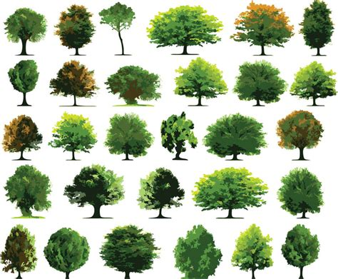 templates tree photoshop trees vector graphics blog page 4