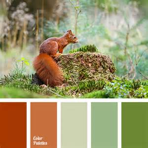 what color are squirrels color of squirrel wool color palette ideas