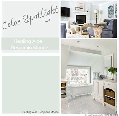 color spotlight healing aloe from benjamin spotlight paint colors and room paint colors