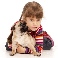 pug puppy biting protecting your children from bites