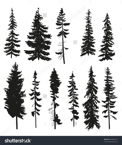 fir tree tattoo vector silhouettes of different pine trees 459883516