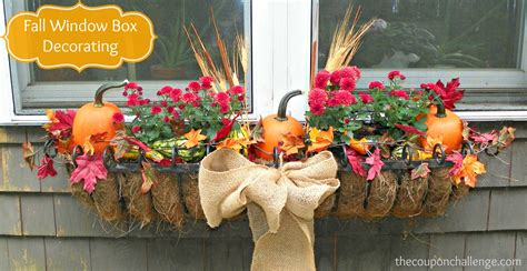 fall window boxes - Fall Flowers For Window Boxes