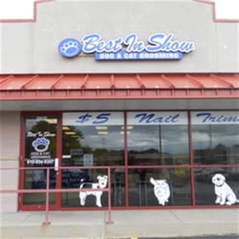 best in show grooming best in show and cat grooming 13 avalia 231 245 es banho tosa 968 e 9th st