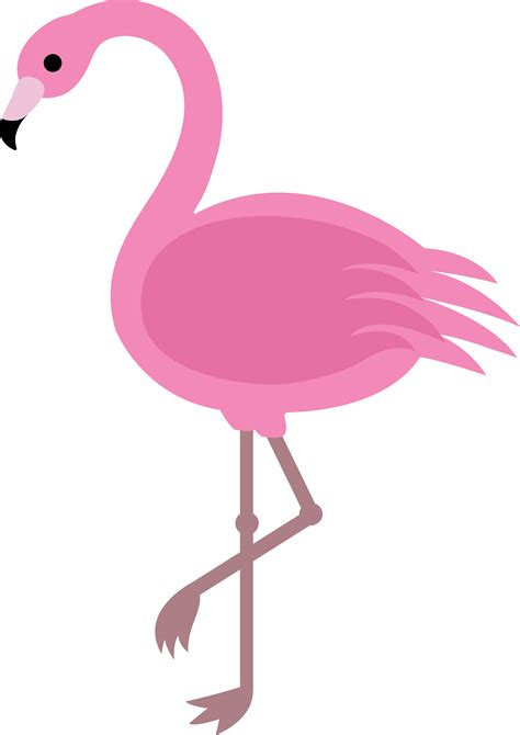 complementary of pink cartoon flamingo png clipart best