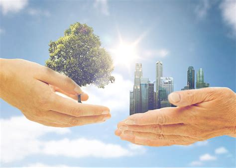 Conservation Of Nature Essay by Essay On Conservation Of Nature For Children And Students
