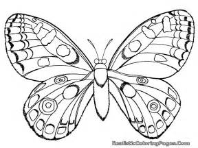 insect coloring pages realistic insect coloring pages realistic coloring pages