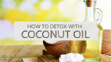 What To Eat After Coconut Detox by How To Detox With Coconut Homesteader