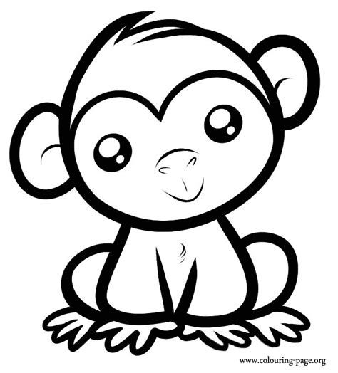 monkeys a cute baby monkey sitting coloring page