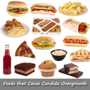 foods to avoid candida albicans mobieg