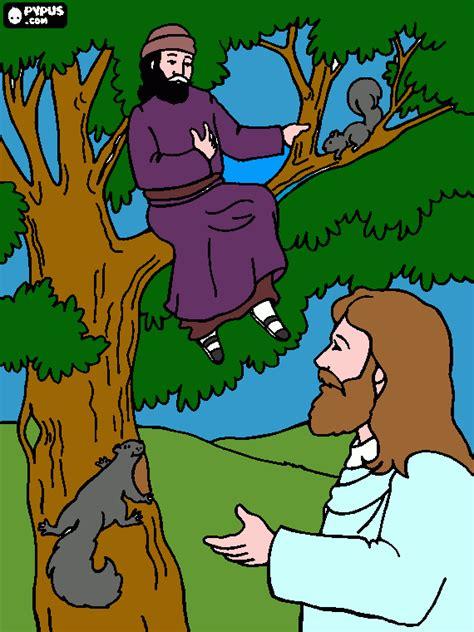Imagenes Biblicas De Zaqueo | zaqueo y jes 250 s para colorear zaqueo y jes 250 s para imprimir