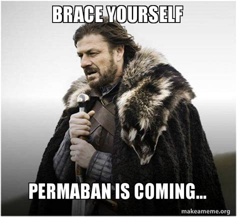 Brace Yourself Meme Maker - brace yourself permaban is coming brace yourself