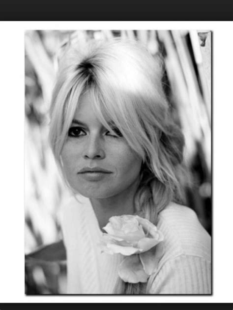 Bridget Bardot Hairstyles by 197 Best Images About Bangs On Wispy Bangs