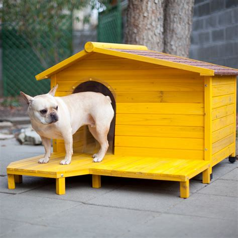 yellow dog house 15 adorable dog houses adorable home