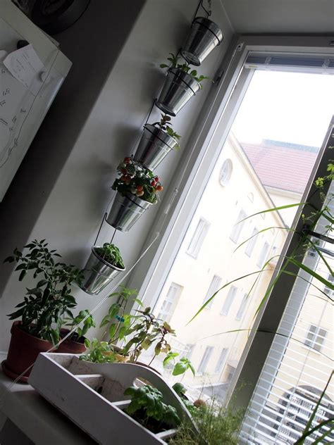 Vertical Window Garden 20 Ideas For Creating A Vertical Garden