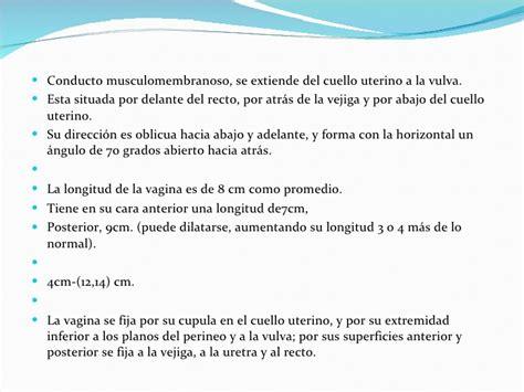 vestibulo anatomia femenina anatomia femenina