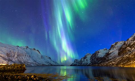 tromso northern lights europe and northern lights cruise from bristol newmarket