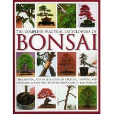 bonsai the complete guide bonsai books sts on bonsai bonsai trees and bonsai plants
