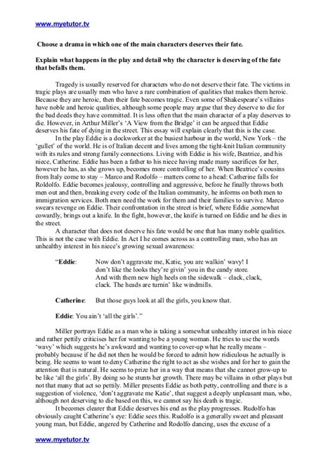 Bridges Essay Writing by A View From The Bridge Critical Essay On A Character That