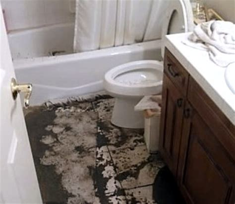 sewage in basement basement sewage spill cleanup in ct call 203 502 9643