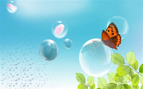 hd butterfly  bubble wallpaper