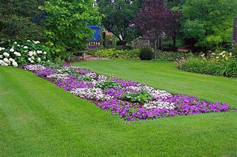 fiori da giardino foto giardini in fiore giardinaggio