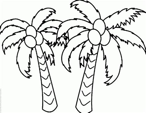coloring page of a coconut tree coconut tree coloring page coloring pages ideas reviews