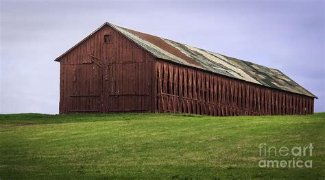 Tobacco Shed Ct by Hilltop Connecticut Tobacco Barn Photograph By Phil Cardamone