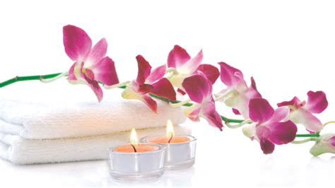 spa pics spa flowers png www pixshark images galleries with