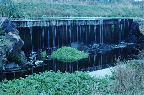 Talking Water Gardens by Green Infrastructure Tour