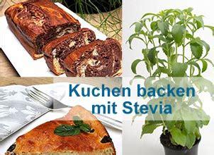 kuchen backen mit stevia kuchen mit stevia