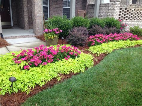 beautiful landscaping using geraniums and sweet potato vine beautiful vibrant colors
