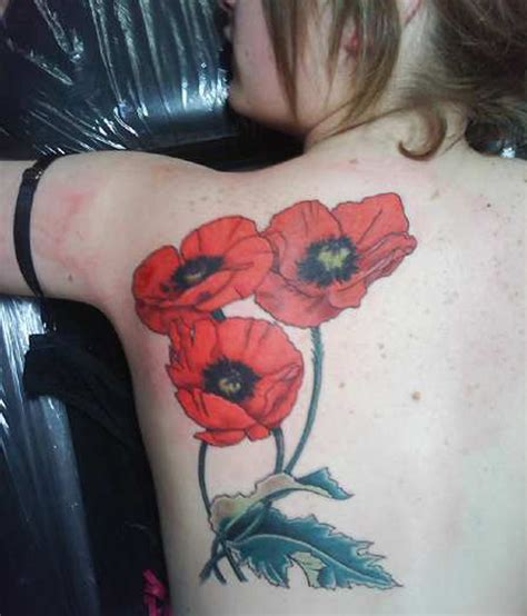 poppy tattoo designs poppy tattoos designs ideas and meaning tattoos for you
