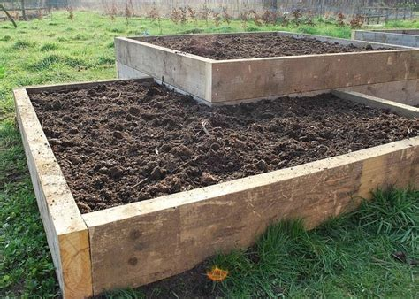 raise bed new raised beds the story so far the garden deli