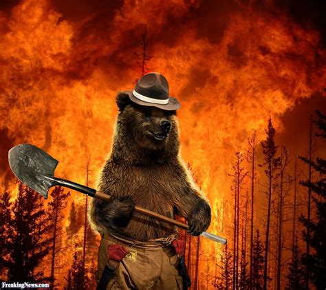 smokey the smokey the pictures freaking news