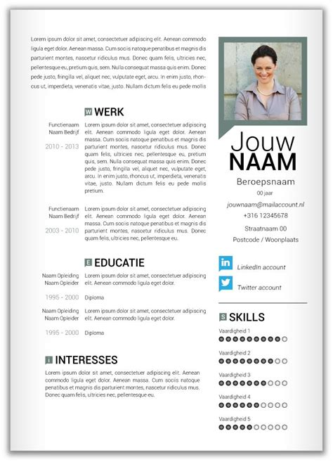 Cv Template Nederlands Voorbeeld Cv 359 Tthh Work Cv Format Cv Template And Templates