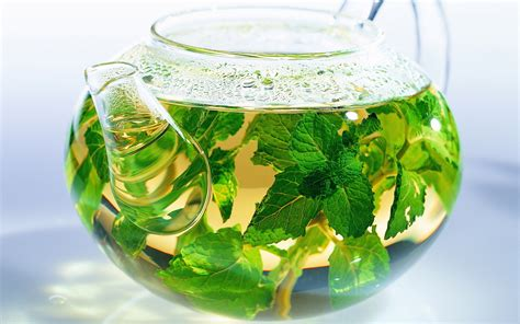 Herbal Tea herbal tea wallpapers and images wallpapers pictures photos