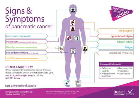cancer symptoms pancreatic cancer symptoms signs symptoms of pancreatic cancer