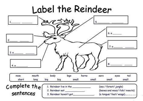 printable reindeer worksheets label the reindeer worksheet free esl printable