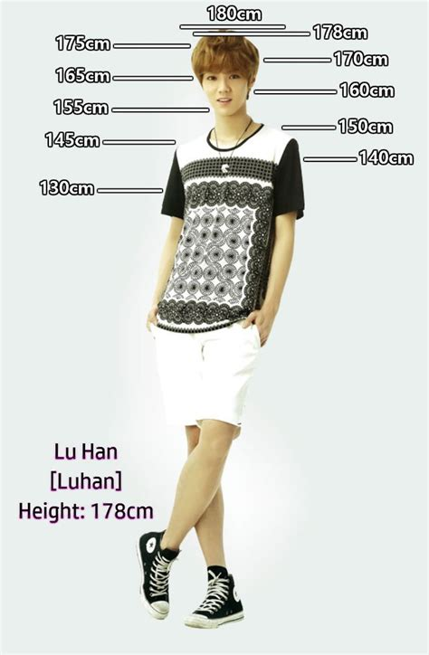 exo xiumin height height chart luhan 鹿晗 i m 175cm haha exo 엑소 kpop