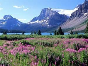 картинки про казахстан про природу