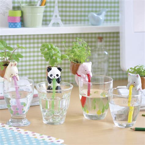 self watering self watering animal plant kit by frolic and cheer