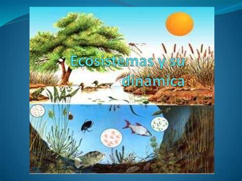 imagenes de habitats naturales ecosistema